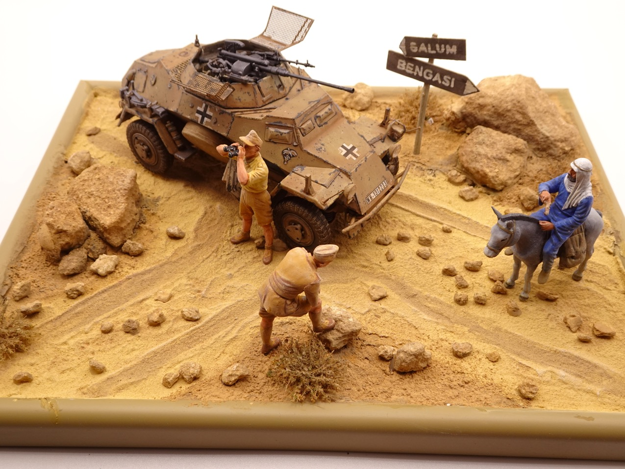Mai 1941 non loin de Tobrouk [1/35] 222-dio-5